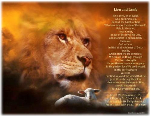 lionandlamb03